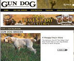 READ ALL ABOUT IT:  GUN DOG, Features the Spinone, August 2008 issue